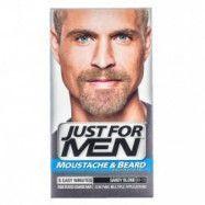 Just For Men Skägg- och polisongfärg – Sandy Blond
